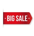 Big Sale Banner red ribbon vector image