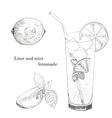 Lime and mint lemonade ink sketch set vector image