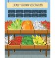Supermarket shelves of vegetables vector image