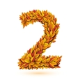 Autunm fall bright orange leaves number vector image