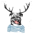 Hand drawn dressed up pug in hipster style vector image