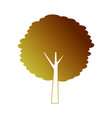 Tree trunk bush nature forest icon vector image