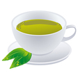 Cup of green tea with leafs vector image