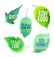 green leaves with words raw eco bio vector image