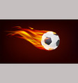 soccer european football ball on fire resizable vector image