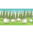 Smiling sheeps vector image