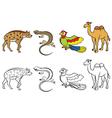 animal set hyena lizard parrot camel vector image vector image