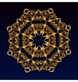 Vintage gold lace ornament vector image