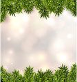 Fir christmas background vector image