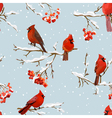 Winter Birds with Rowan Berries Retro Background vector image