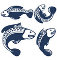 collection of fishes vector image