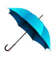 umbrella blue vector image vector image