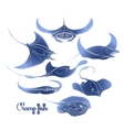 Graphic cramp fish collection vector image