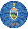 ball with kansas flag vector image