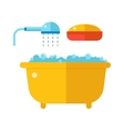 Beautiful bath with shower and soap cartoon flat vector image