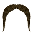 Brown Hairy Mustache vector image