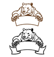 wild kodiak bear with banner as a mascot isolated vector image