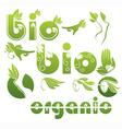 bio symbols vector image