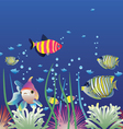 aquarium and colorful fishes vector image