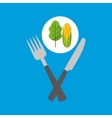 fresh eating lettuce with cob vector image