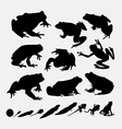 Frog and metamorphose silhouettes vector image