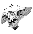 Hand drawn owl for your design wildlife concept vector image