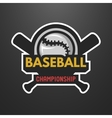 Baseball sports logo label emblem vector image vector image