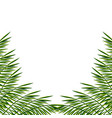 bunner with palm leaves exotic tropical poster vector image