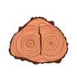 Tree wood slices vector image