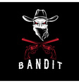 Bandit Skull With Revolvers vector image