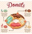 Donut infographics set vector image