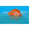 Orange Fish in Sea Background EPS10 vector image