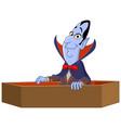 vampire raising from coffin vector image