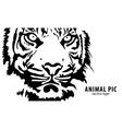 vector tiger vector image