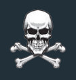 pirates skull and bones vector image