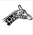 Giraffe head 2 vector image