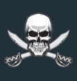 pirates skull and swords vector image