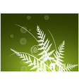 Beauty fern background vector image