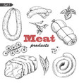 set of isolated meat products vector image