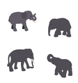Set of Elephant Isolated on White Background Eps10 vector image vector image