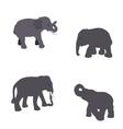 Set of Elephant Isolated on White Background Eps10 vector image