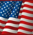 waving usa flag vector image