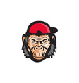 Angry Chimpanzee Head Baseball Cap Retro vector image
