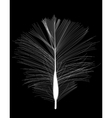 White Bird Feather Drawn on Black Background vector image vector image