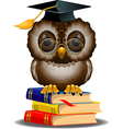 Owl with graduation cap vector image vector image