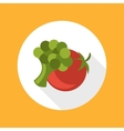 Tomato with broccoli icon vector image