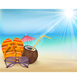 Summer beach sandals color  young coconut with s vector image