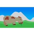 Cow Walks Eats the Grass EPS10 vector image
