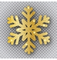 golden snowflake on transparent background vector image