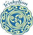 Irish Triskelion vector image